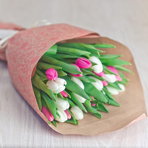 Букет из белых и малиновых тюльпанов