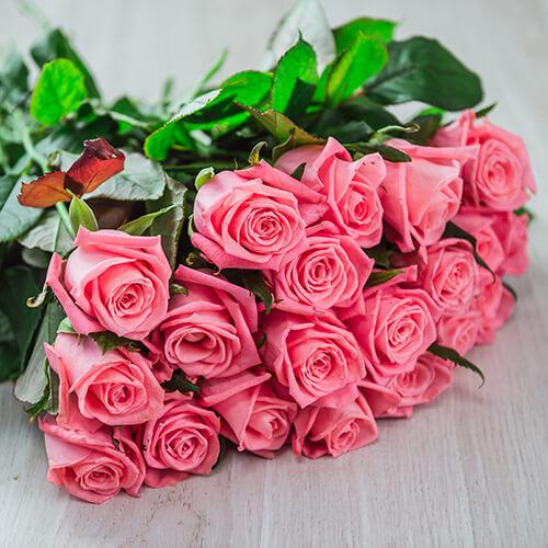 Лососёвая роза (Россия)