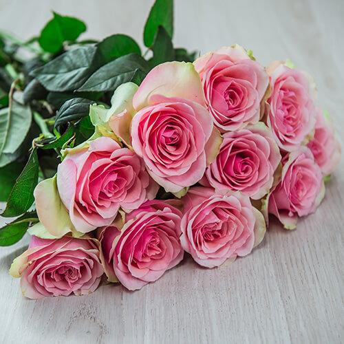 Персиково-розовая (Кения)
