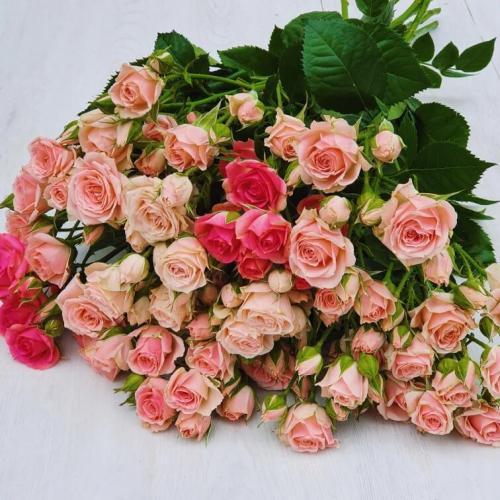 """Кустовые розы """"Нежный микс"""""""