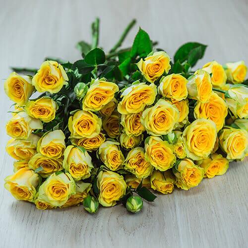 Жёлтая кустовая роза