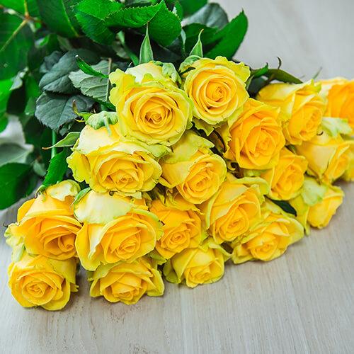 Жёлтая роза (Россия)